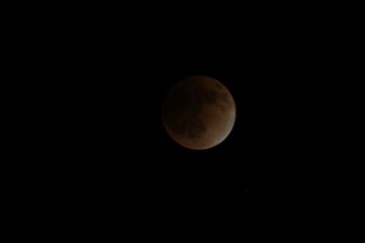 soku_16125.jpg :: 風景 自然 天体 月 皆既月食