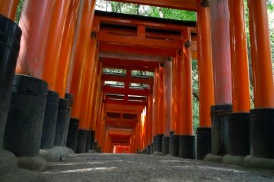 soku_16620.jpg :: 建築 建造物 神社 鳥居 伏見稲荷