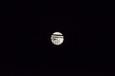 soku_16715.jpg :: 建築 建造物 橋 風景 自然 天体 月 満月 スーパームーン
