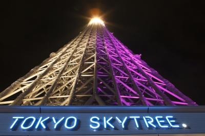 soku_16785.jpg :: 建築 建造物 塔 タワー 東京スカイツリー ライトアップ 夜景