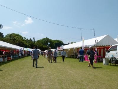 soku_16875.jpg :: 風船 風景 自然 空 青空 祭り フェア