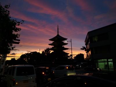 soku_17210.jpg :: 建築 建造物 塔 五重塔 夜景