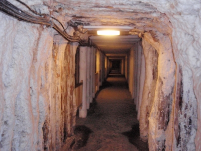 soku_17320.jpg :: 海外 歴史資料館 鉱山 鉱山跡
