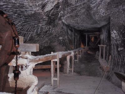 soku_17321.jpg :: 海外 歴史資料館 鉱山 鉱山跡