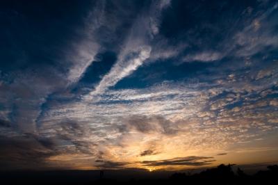 soku_17640.jpg :: 空 雲 夕焼け 鳥 ムクドリ