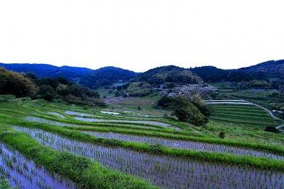 soku_17830.jpg :: 風景 街並み 郊外の風景 田園 青カブリ