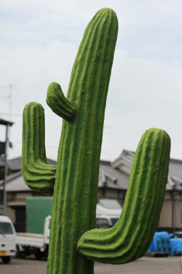 soku_17839.jpg :: オブジェ サボテン