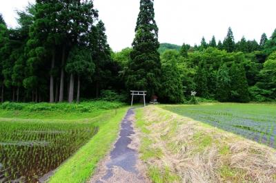 soku_18008.jpg :: 建築 建造物 神社 鳥居 あぜ道 田んぼ