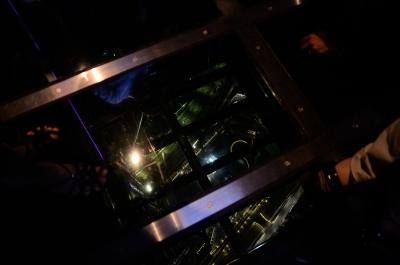 soku_18122.jpg :: 建築 建造物 塔 タワー 東京スカイツリー 透床