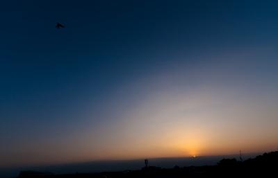 soku_18152.jpg :: 空 夕日 つばめ 燕 ツバメ