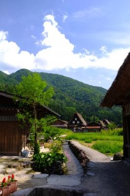 soku_18627.jpg :: 白川郷 風景 街並み 郊外の風景 農村