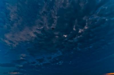 soku_18723.jpg :: 空 雲 鳥 夕焼