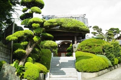 soku_19625.jpg :: dp2merrill 建築 建造物 寺院 公園 庭園 和風庭園