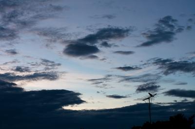 soku_19733.jpg :: 夕暮れ 空 雲 風景 鳥 カラス