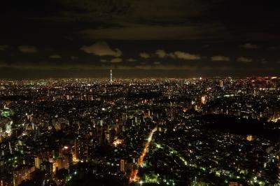 soku_19875.jpg :: 夜景 RX100 風景 街並み 都市の風景