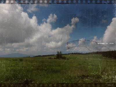 soku_20139.jpg :: PowerShotS95 風景 自然 コンデジ埼玉 lock フィルム調 空 雲 草原 木 ビーナスライン 投げやりな作風(笑)