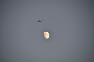 soku_21061.jpg :: 風景 自然 天体 月 乗り物 交通 航空機 飛行機 旅客機