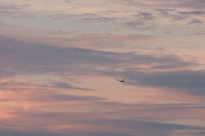 soku_21079.jpg :: 飛行機 ヒコーキが足りない by KIJ