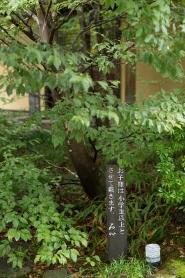 soku_21378.jpg :: 蕎麦屋 勘違い 植物 樹木 庭木