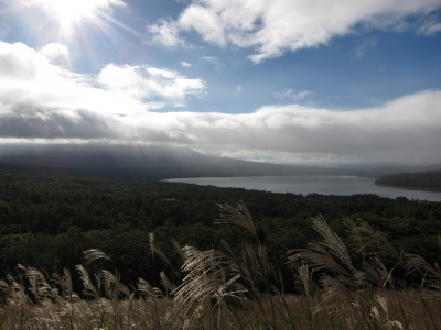soku_21475.jpg :: PowerShotS95 風景 自然 水分 コンデジ埼玉 lock 湖 山中湖 パノラマ台 富士山…が見えない(涙) ススキ Jpeg撮って出しリサイズのみ