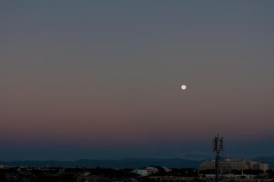 soku_21491.jpg :: 満月 中秋 月の入り 空 風景