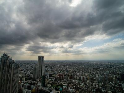 soku_21635.jpg :: 風景 街並み 都市の風景 ビル 都庁