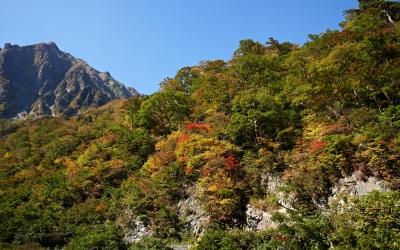 soku_21721.jpg :: 風景 自然 紅葉 山の紅葉