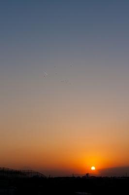 soku_21851.jpg :: 空 夕日 夕焼け 飛行機 鳥