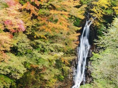 soku_21888.jpg :: PowerShotS95 風景 自然 水分 コンデジ埼玉 lock 滝 大久保の滝 西沢渓谷 紅葉 黄色い紅葉
