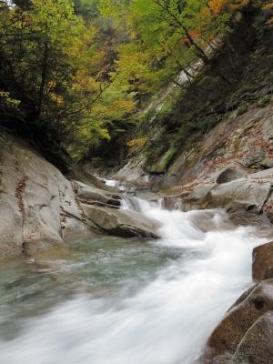 soku_22196.jpg :: PowerShotS95 風景 自然 水分 コンデジ埼玉 lock 川 西沢渓谷 紅葉 黄色い紅葉