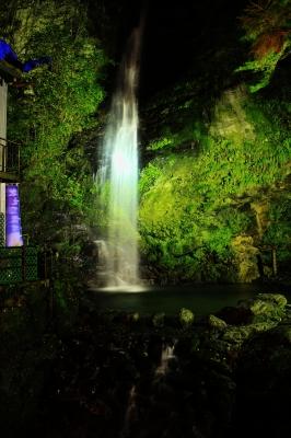 soku_22217.jpg :: 風景 自然 滝 びわの滝 夜 ライトアップ