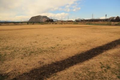 soku_22228.jpg :: 多摩川 風景 自然 川 河川 河川敷
