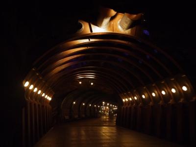 soku_22306.jpg :: 遊園地 テーマパーク ディズニーランド 夜景