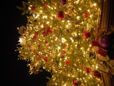 soku_22309.jpg :: 遊園地 テーマパーク ディズニーランド 夜景