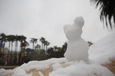 soku_22322.jpg :: 遊園地 テーマパーク ディズニーランド 雪