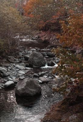soku_22407.jpg :: 風景 自然 川 渓谷 紅葉