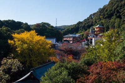 soku_22457.jpg :: 朝護孫子寺 建築 建造物 寺院