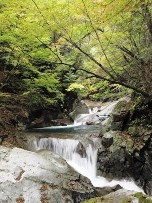 soku_22501.jpg :: PowerShotS95 風景 自然 水分 コンデジ埼玉 lock 川 河川 西沢渓谷 紅葉 黄色い紅葉