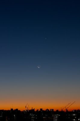 soku_23220.jpg :: 朝焼け 三日月 金星 水星