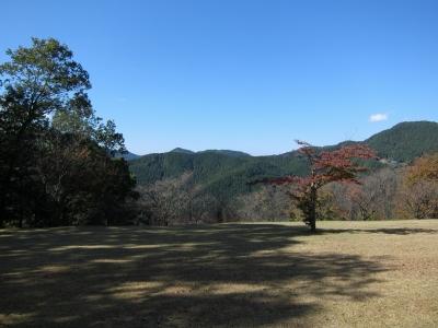 soku_23288.jpg :: PowerShotS95 風景 自然 コンデジ埼玉 lock 空 紅葉 赤い紅葉 桜山公園