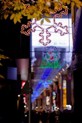 soku_23385.jpg :: クリスマス イルミネーション