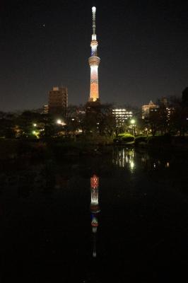 soku_23450.jpg :: 夜景 塔 タワー 東京スカイツリー