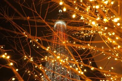 soku_23451.jpg :: 夜景 色 光 イルミネーション 東京スカイツリー