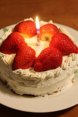 soku_23460.jpg :: デコレーションケーキ 1本 ロウソク