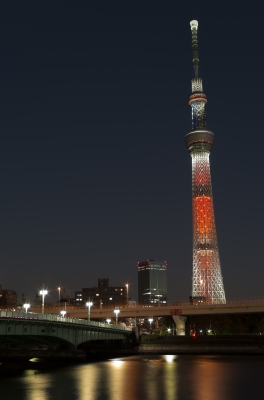 soku_23462.jpg :: 建築 建造物 塔 タワー 東京スカイツリー 色 光 ライトアップ
