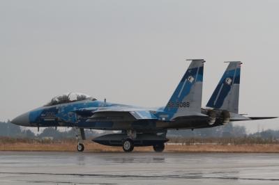 soku_23533.jpg :: 戦闘機 F.15DJ アグレッサー
