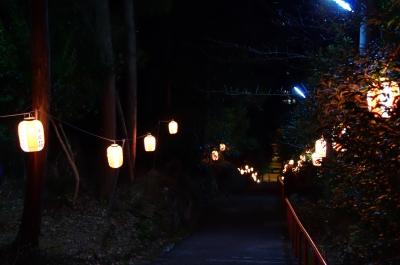 soku_23574.jpg :: 高知 愛宕神社 階段 初詣 寺社仏閣