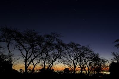 soku_23920.jpg :: 風景 自然 夜景 シルエット