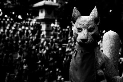 soku_23940.jpg :: 建築 建造物 神社 狛犬