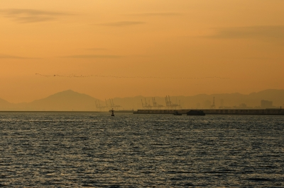 soku_24549.jpg :: 風景 自然 空 夕日 夕焼け 日没 海